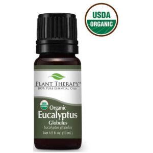 Organic Eucalyptus Globulus